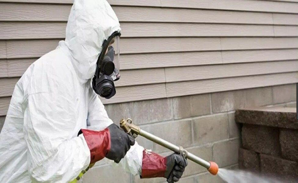 böcek ilaçlama, böcek ilaçlama işlemi, böcek ilaçlaması yapımı